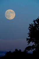 Moon Rise - Sept 09